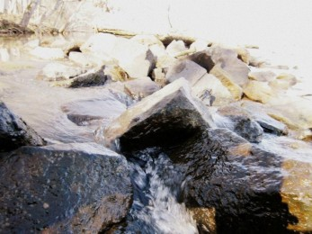 Rocks at Landsford Canal State Park