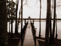 The pier found at Lake Warren St Park, one of the 47 state parks in South Carolina.