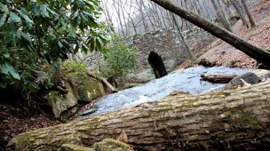 Poinsett Bridge is the oldest intact bridge constructed in 1820. The bridge once served as a connector from Greenville to Asheville and was named after Joel R. Poinsett. © Michael Tolbert